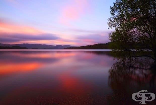 32 снимки, показващи мира и спокойствието на природата