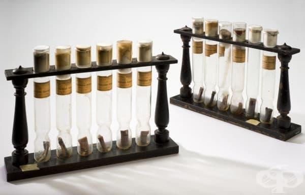 """Бактериологични проби от 1888 година, изследвани в """"Института Пастьор"""""""