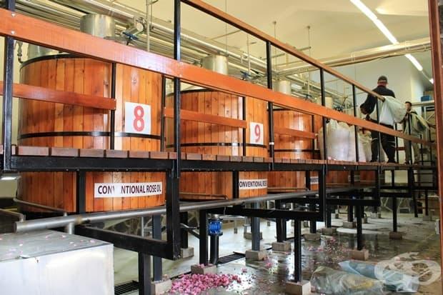 Производство на розово масло в сърцето на България