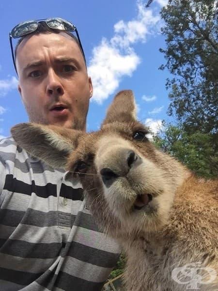 Братовчед ми искаше селфи с кенгуро