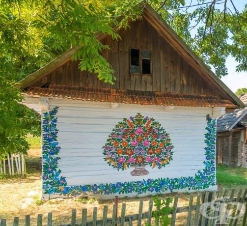 Вижте малкото полското село, в което всичко е покрито в пъстри картини на цветя