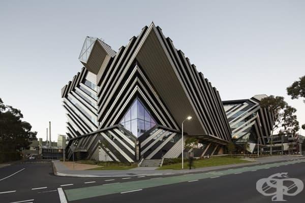 Университет в Австралия