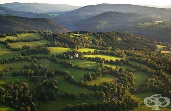 Бохемска гора в Чехия