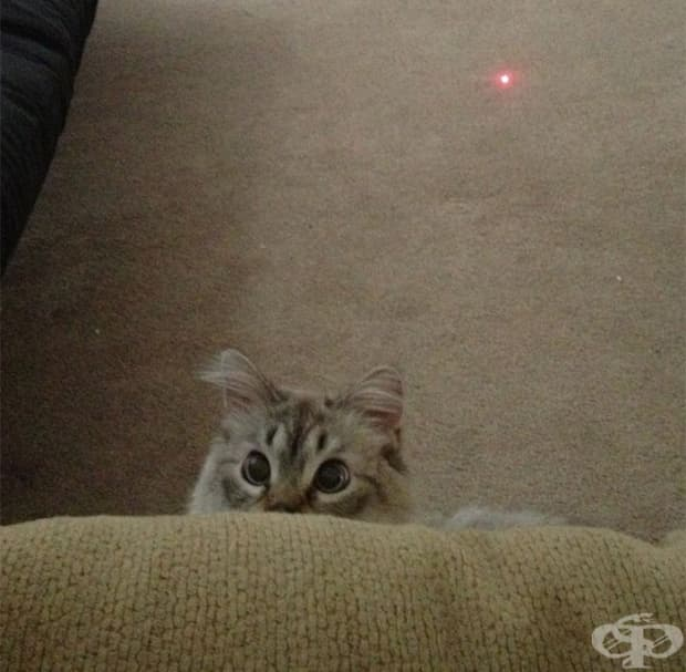 Току що разбра откъде идва лазерът.