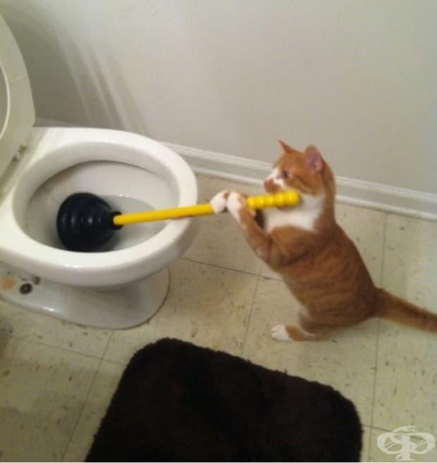 Никой не ми помага в тази къща!