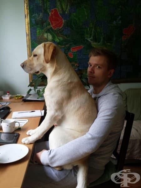 Информирай сервитьора, че съм готов за вечеря!
