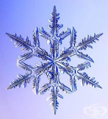 Снежинки под микроскоп