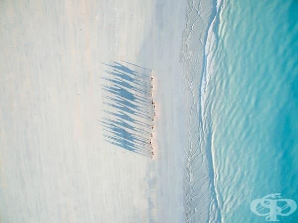 2-ра награда – категория Пътуване: Плажът Кейбъл