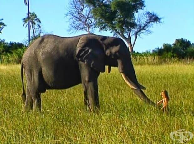 Тя знае как да се сприятели, дори и с най-дивите животни.