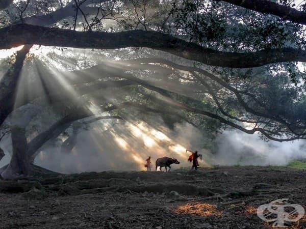 Фуген Ксиао, Китай – 1 място, категория Пътуване