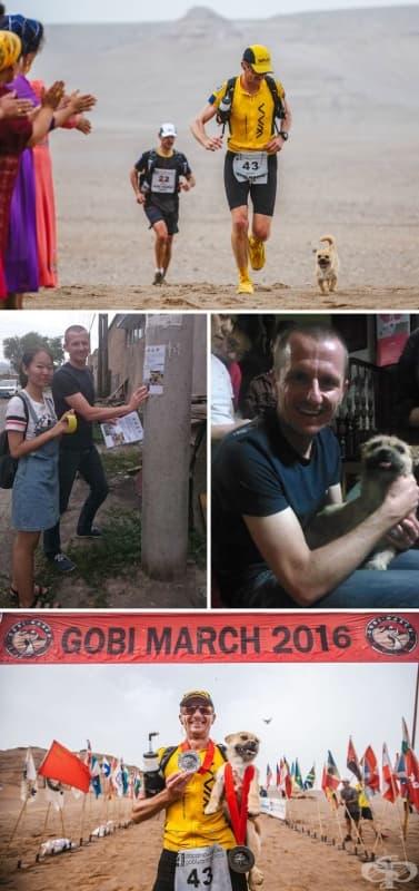 Бездомното куче, което се присъединява към маратон, дълъг 155 мили, изчезва. Един от атлетите отива чак до Китай, за да го открие и заведе вкъщи.