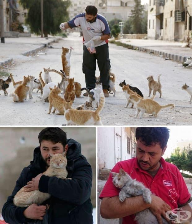 Хората напускат раздирания от войната Алепо, но един мъж остава там, за да се грижи за изоставените котки.