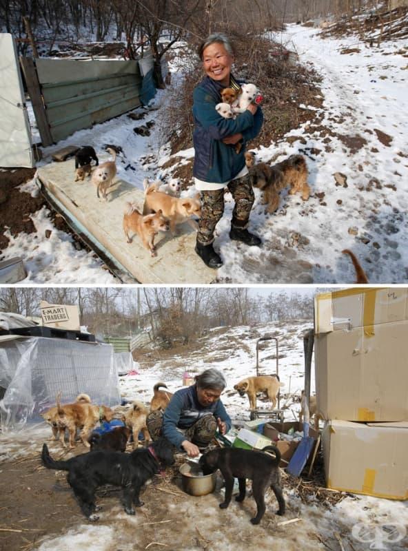 Жена от Южна Корея отглежда 200 кучета, които щели да се превърнат в храна в изискани ресторанти.