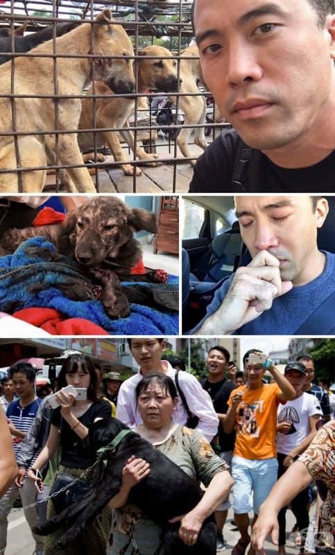 Този мъж спасява 1 000 кучета от фестивала за месо Юлин, въпреки че после бива пребит за постъпката си.