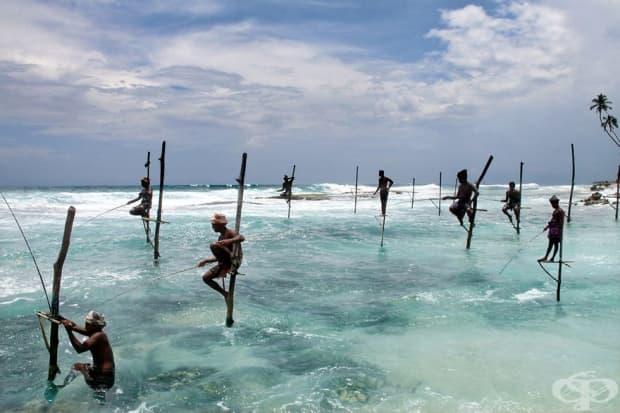 Рибари от Шри Ланка в Ашангама