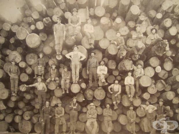 Дървари, 1900 г.