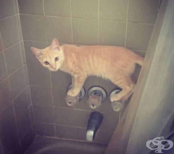 Като например върху крановете в банята.