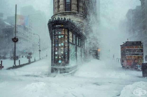 Зимната буря Джонас, Ню Йорк
