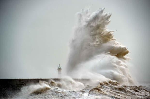 Бурята Имоджен, южна Англия