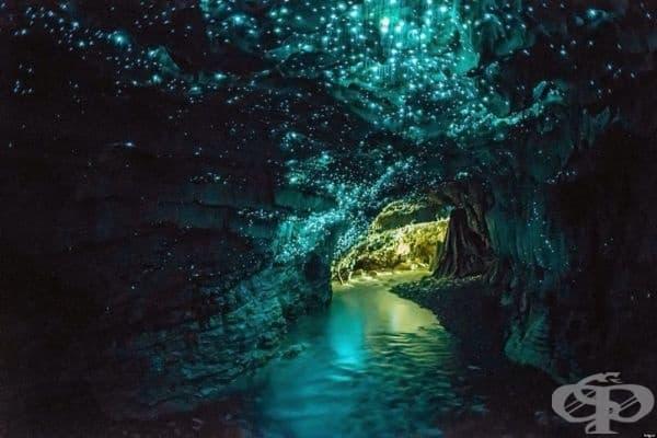 Светещата пещера Уайтомо, Нова Зенландия.
