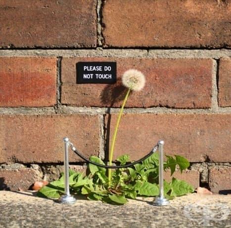 20 необичайни примера на уличното изкуство, които да озарят деня ви!