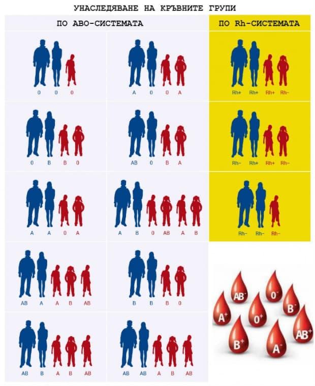 Унаследяване на кръвни групи
