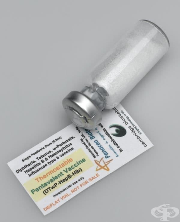 Термоустойчива ваксина от 2007 година