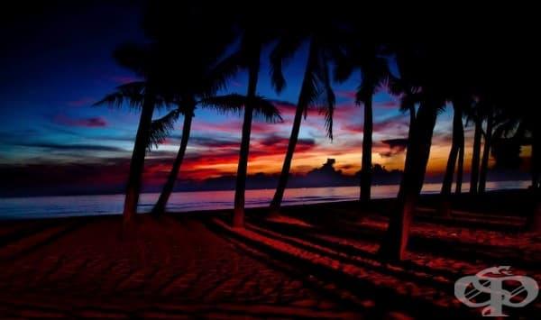 Плажът Цуа Дай