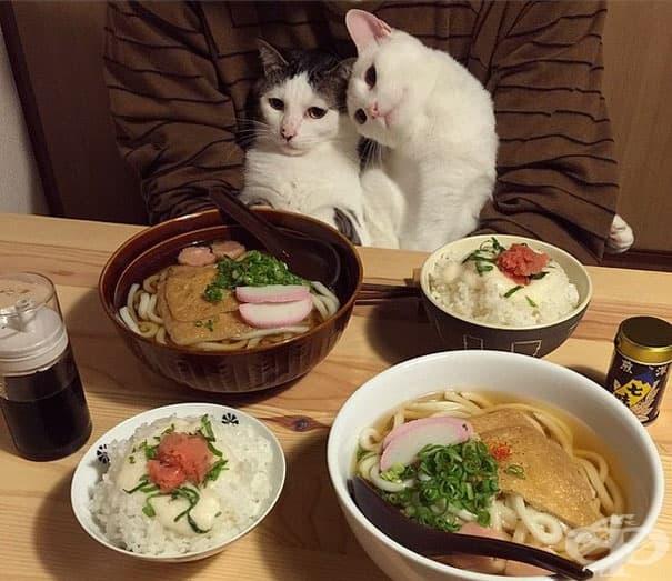 Вечеря за двама