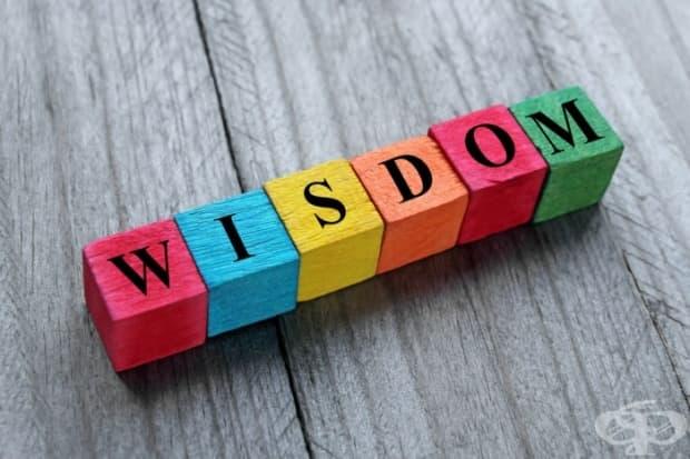 """""""...мъдростта идва тогава, когато вече не ни служи за нищо""""."""