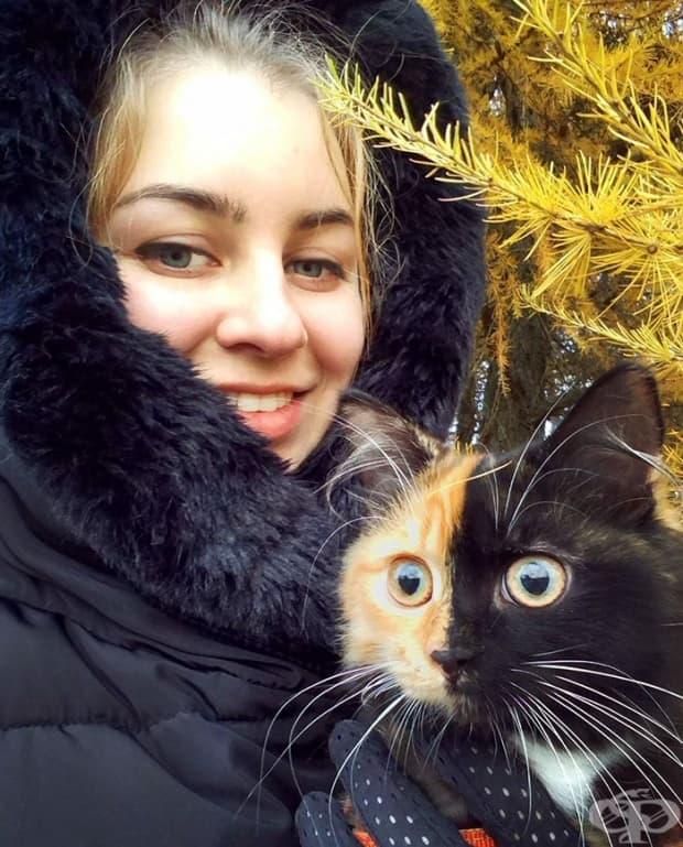 Запознайте се с Яна, котето с две лицa