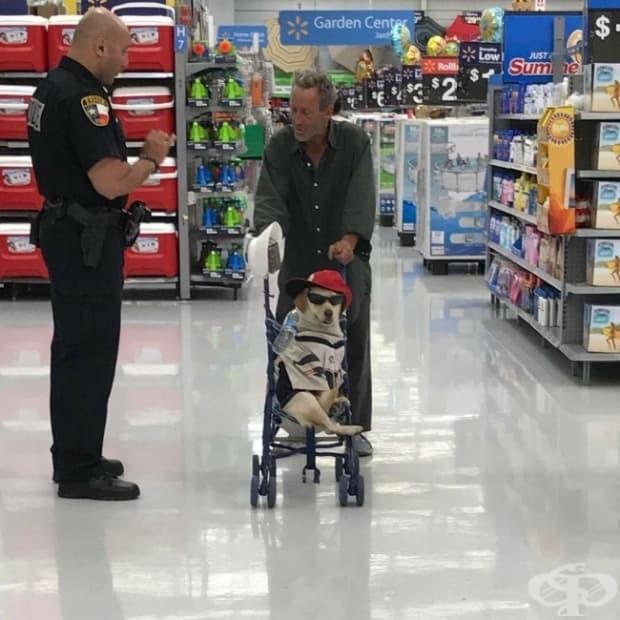 Нищо специално, само мъж и кучето му с количка в супермаркета…