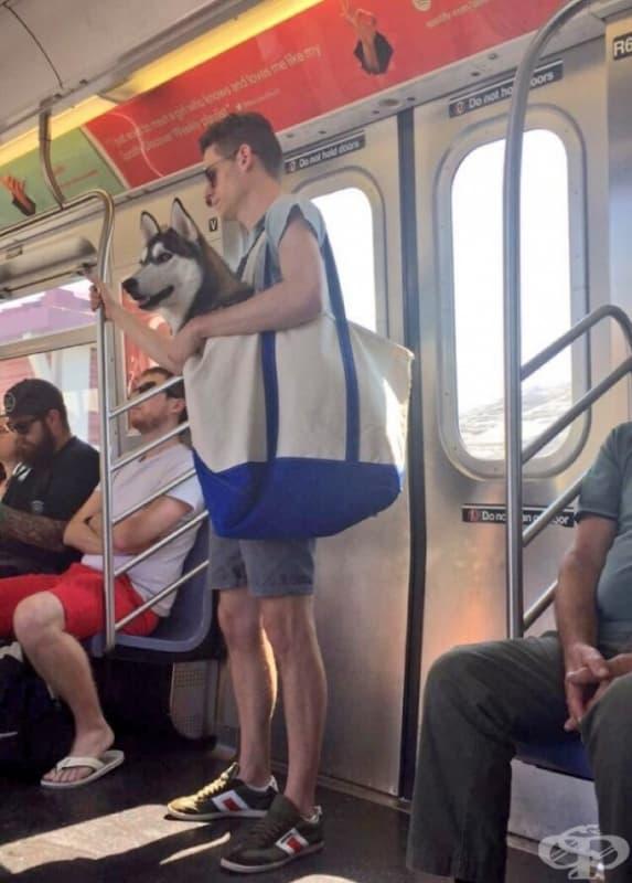Просто мъж с куче в чантата си.