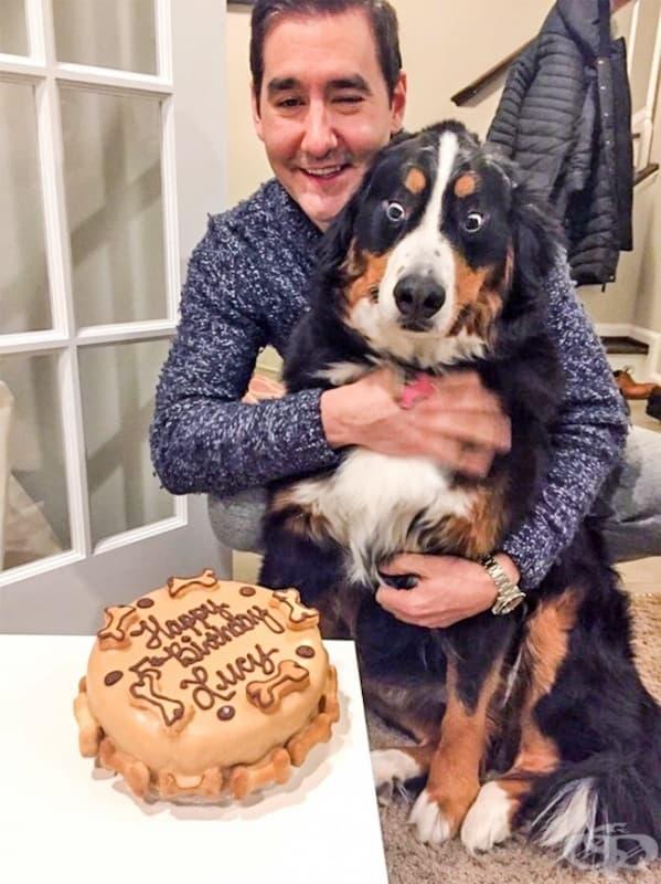 """""""Смятах, че торта за рождения ден на кучето ми е загуба на време. Но реакцията му си струва всеки цент."""""""
