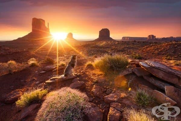 Долината на монументите, САЩ
