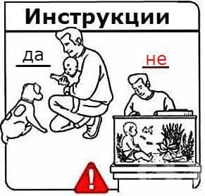Запознаване на бебето с домашните любимци
