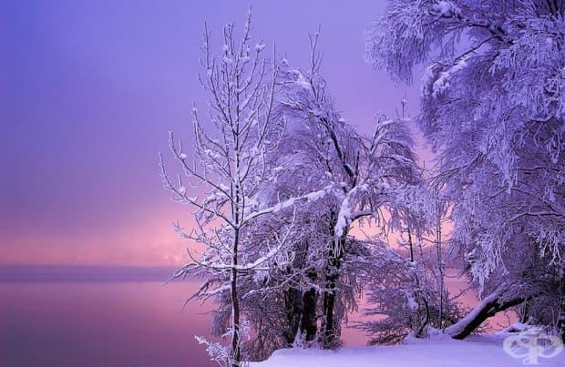 20 спиращи дъха зимни пейзажа