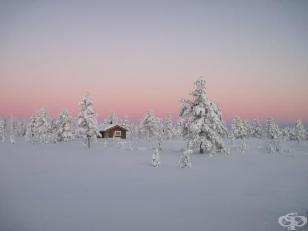 Северна дъждовна гора, Норвегия