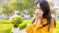 Алтернативно лечение на сезонни алергии