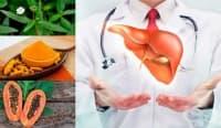 Билки и диета при лечение на цироза на черния дроб