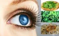 Билки и натурални продукти срещу катаракта