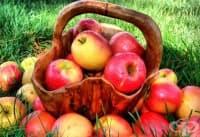 Една-единствена ябълка на ден притежава способността да предпази от пет вида рак