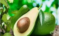 В люспата на ядката на авокадото има безценни съединения