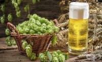 Хмелът в бирата може да създаде проблеми с ерекцията