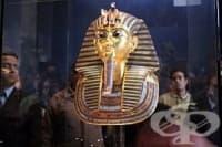 70% от британците имат сходна ДНК с египетския фараон Тутанкамон