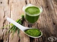 Хлорела почиства организма от тежки метали и подобрява храносмилането