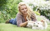 Случайното одраскване или ухапване от куче може да не е безобидно