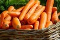 Морковите като средство за отслабване - за и против