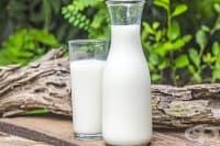 Прясното мляко като средство за отслабване