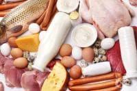 7-дневна протеинова диета